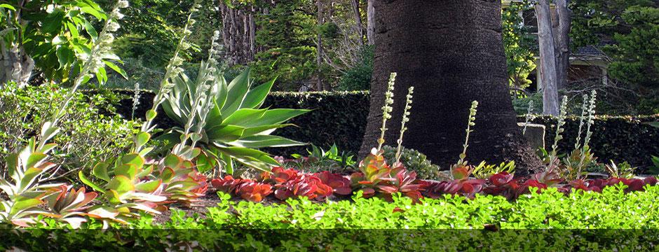 Garden Design Ideas Sydney : Garden design landscaping sydney pdf