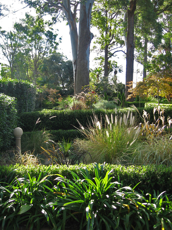 Living Colour Landscapes Formal Garden Design Killara