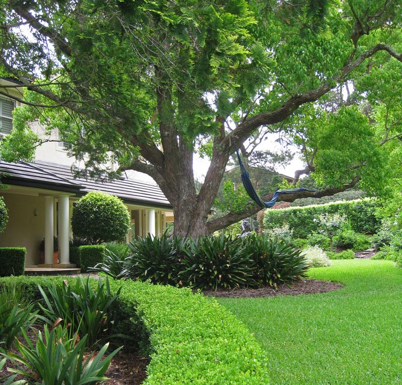 Living Colour Landscapes Classical Garden Design Pymble