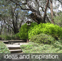 ideas-and-inspiration