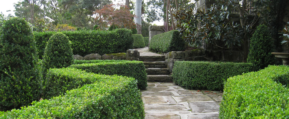 Formal Garden Design Killara