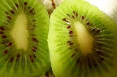 Garden design with Kiwi Fruit