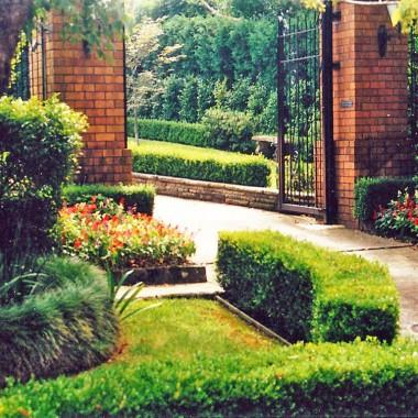 Garden design Wahroonga